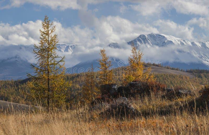 Autumn view, mountain landscape stock photos