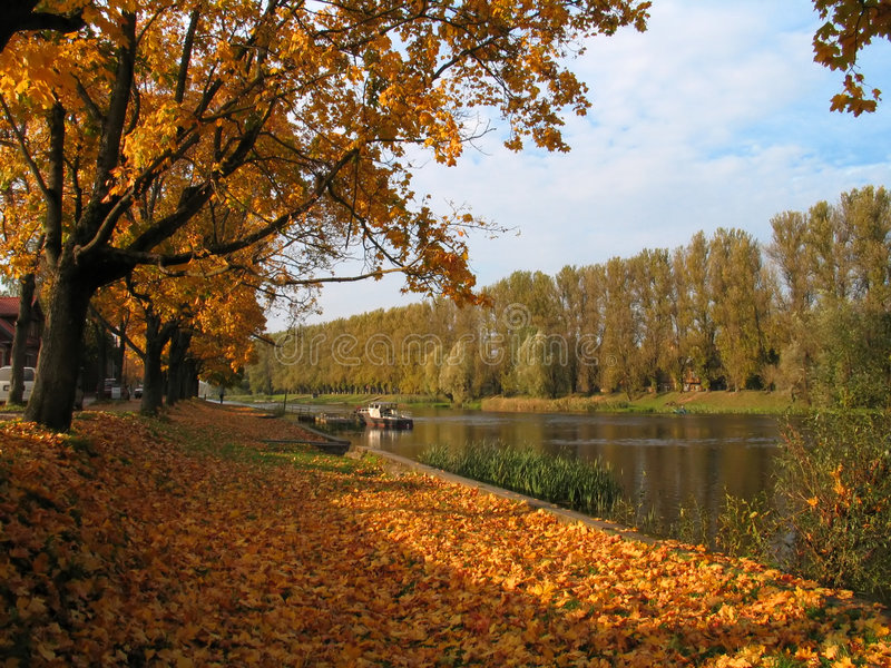 Autumn view at the river royalty free stock photo