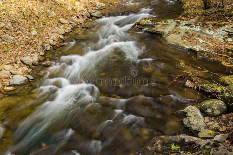 A Wild Mountain Trout Stream. An autumn view of a secluded wild mountain trout stream located in the Blue Ridge Mountains of Botetourt County of Virginia, USA royalty free stock image