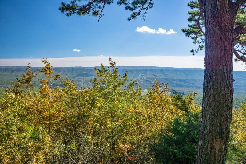 Autumn View van de Blauwe de kreekvallei van Ridge Mountains en van de Gans stock afbeelding