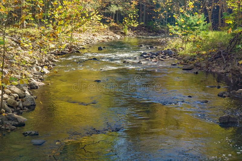 Autumn View of Wilson Creek. An autumn view of Wilson Creek located in Douthat Lake State Park located at Millboro, Virginia, USA stock images