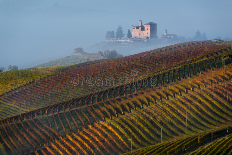 Autumn Vineyards sur les collines photos stock