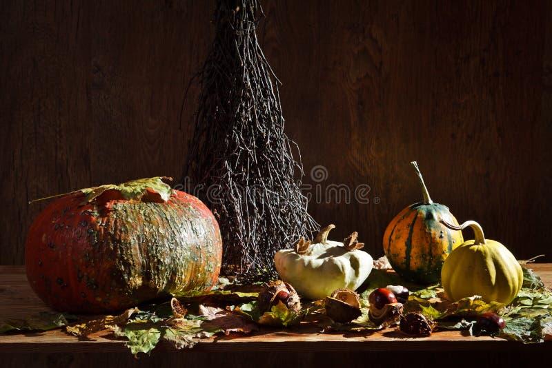 Autumn in vintage basement stock image