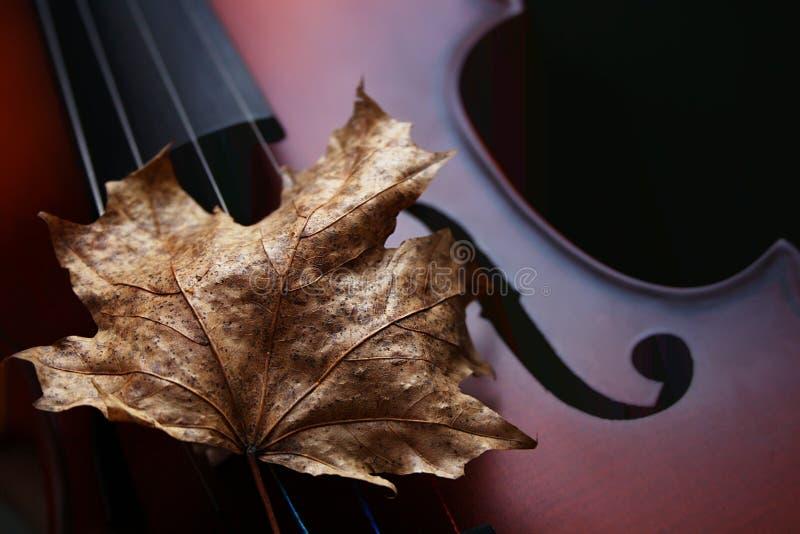 Autumn Violin immagini stock libere da diritti
