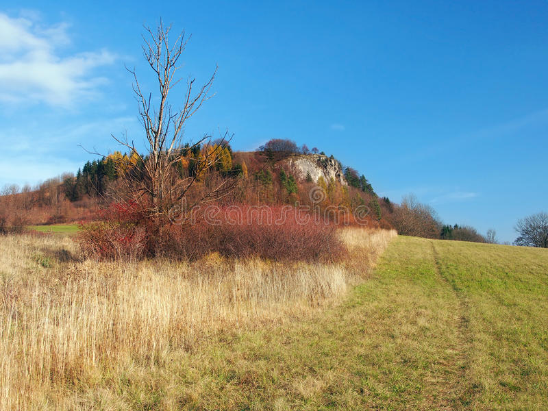 Autumn at Vysnokubinske Skalky, Slovakia stock photos