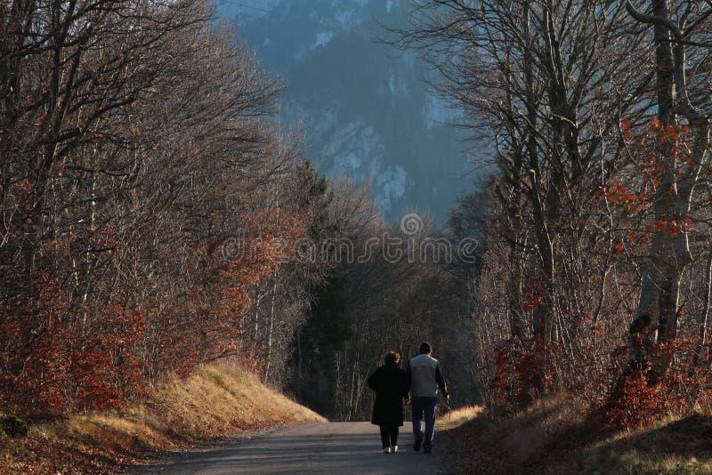 Autumn Walk royalty-vrije stock afbeeldingen