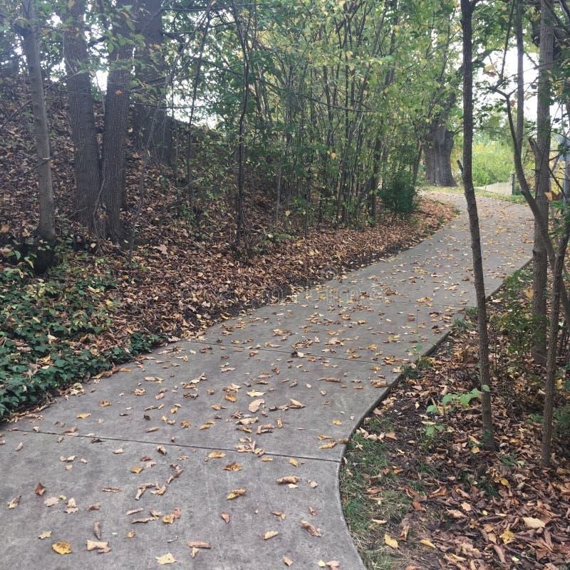 Autumn Walk imagenes de archivo