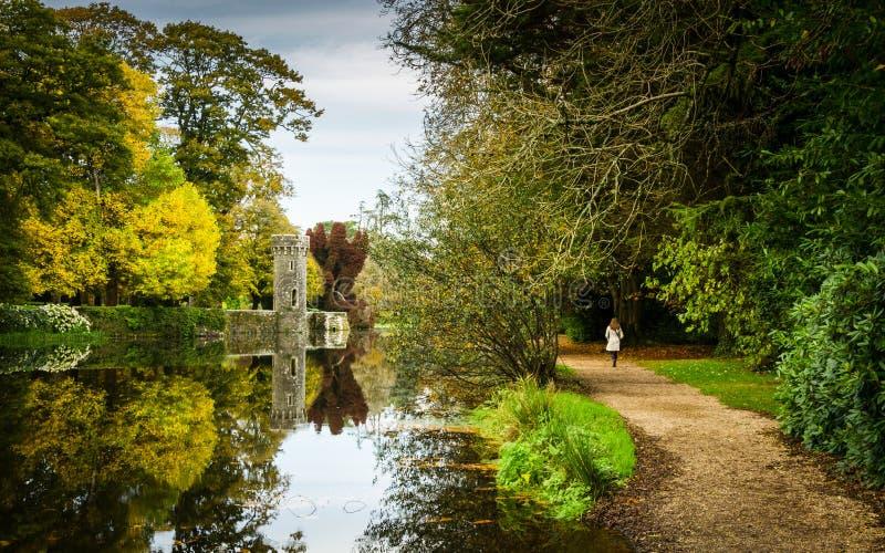 Autumn Walk immagini stock libere da diritti