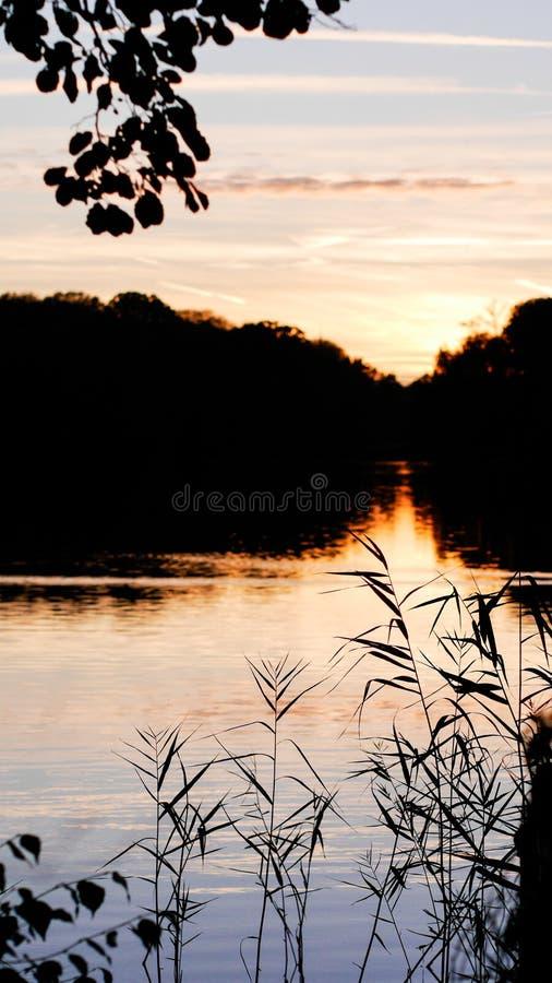 Autumn Walk Free Public Domain Cc0 Image