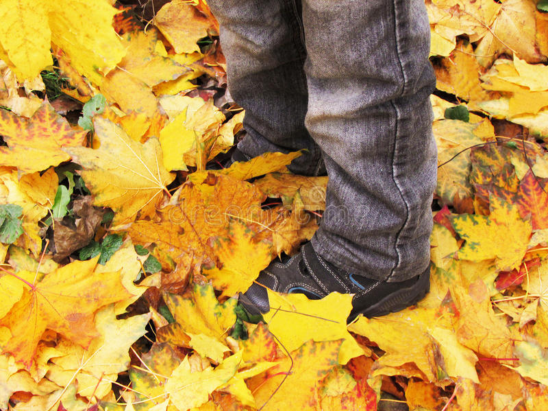 Autumn walk in the Park. stock image