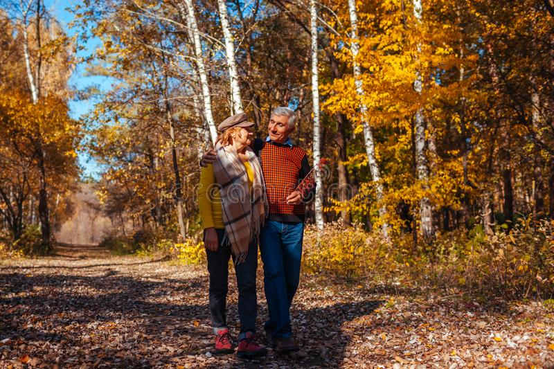Autumn walk. Senior couple walking in fall park. Happy man and woman talking and relaxing outdoors royalty free stock image