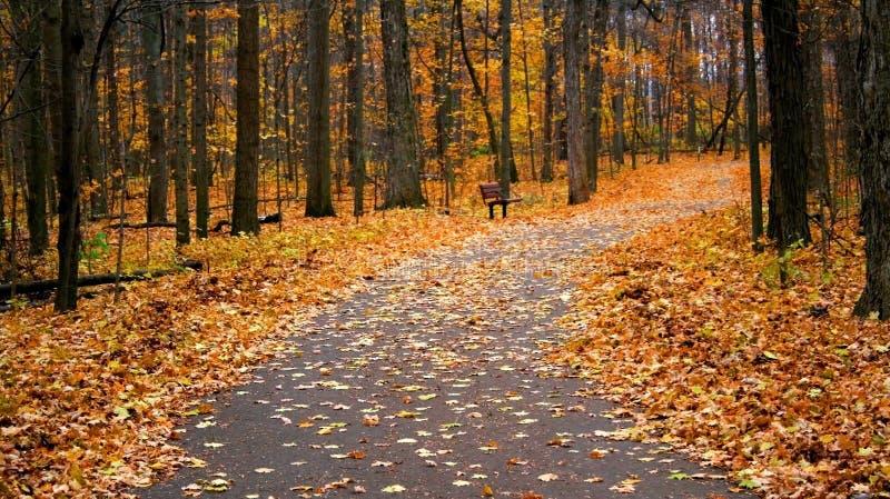 Autumn Walk Way Stock Photos