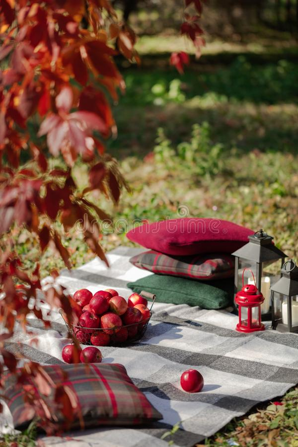 Autumn warm days. Indian summer. Picnic in the garden - blanket. And pillows of gray, burgundy and green color on the background of autumn leaves. Selective royalty free stock photography