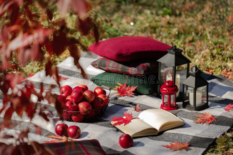 Autumn warm days. Indian summer. Picnic in the garden - blanket. And pillows of gray, burgundy and green color on the background of autumn leaves. Selective stock images