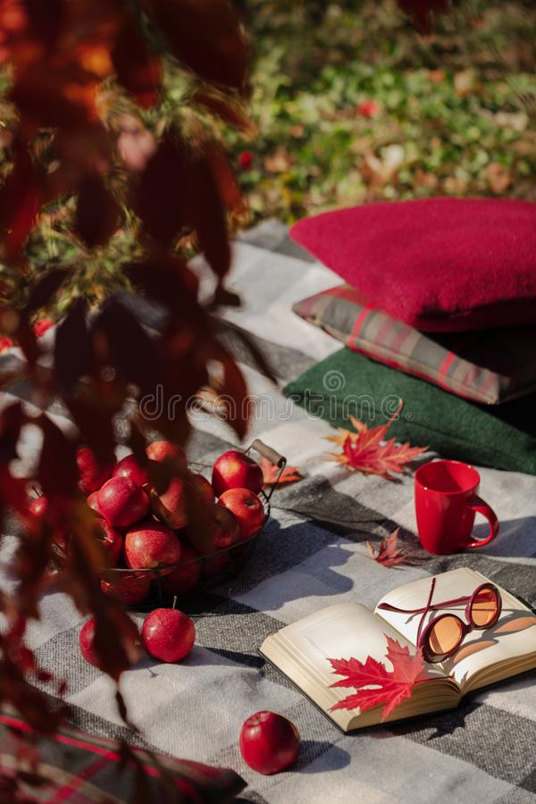 Autumn warm days. Indian summer. Picnic in the garden - blanket. And pillows of gray, burgundy and green color on the background of autumn leaves. Selective royalty free stock image