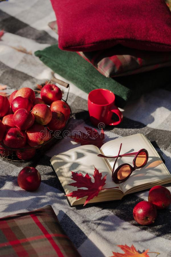 Autumn warm days. Indian summer. Picnic in the garden - blanket. And pillows of gray, burgundy and green color on the background of autumn leaves. Selective stock photos