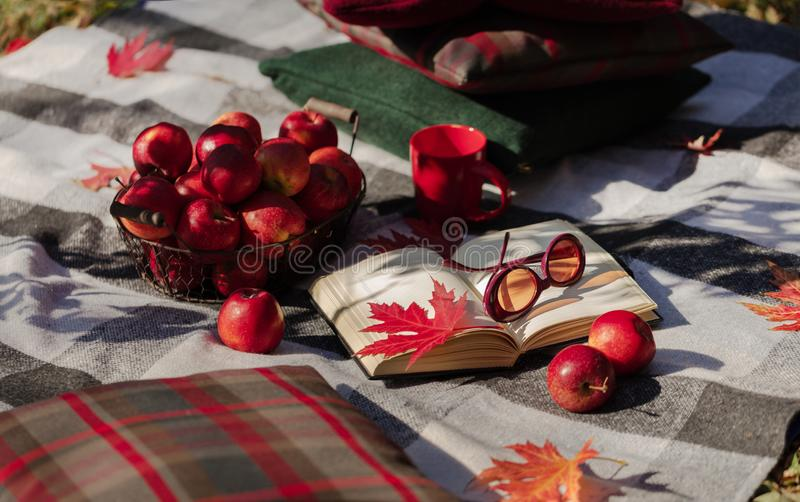 Autumn warm days. Indian summer. Picnic in the garden - blanket. And pillows of gray, burgundy and green color on the background of autumn leaves. Selective royalty free stock photo
