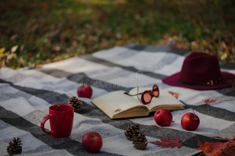 Autumn warm days. Indian summer. Picnic in the garden - blanket. And pillows of gray, burgundy and green color on the background of autumn leaves. Selective stock photo