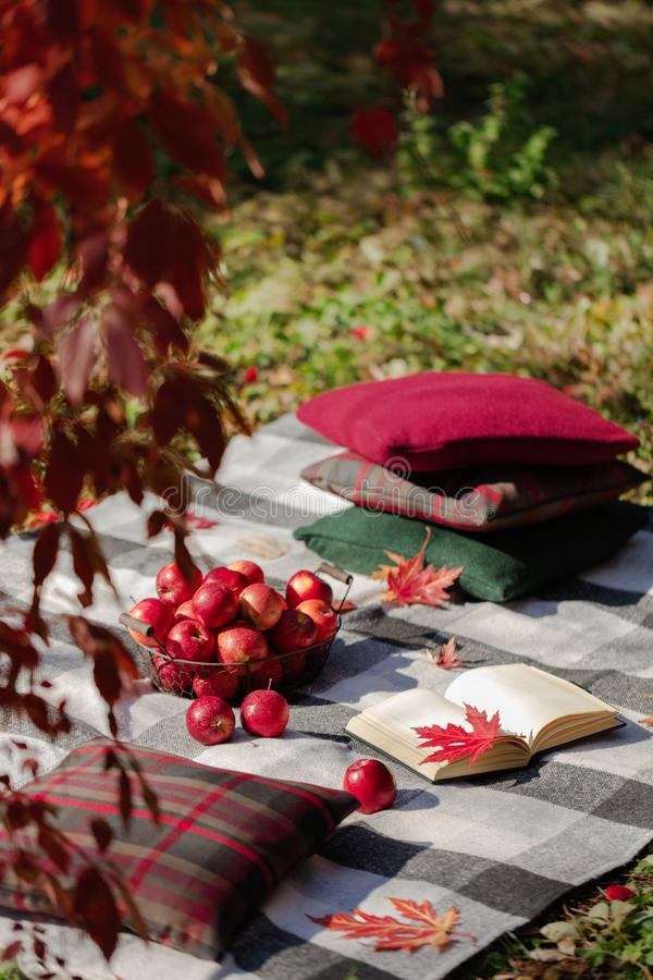 Autumn warm days. Indian summer. Picnic in the garden - blanket and pillows of gray, burgundy and green color on the background of. Autumn leaves. Selective royalty free stock photos