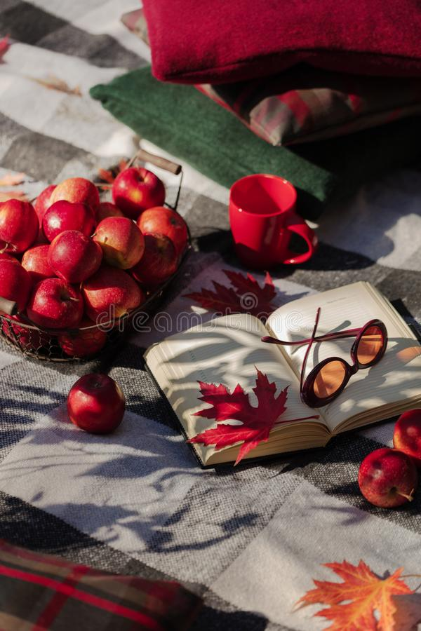 Autumn warm days. Indian summer. Picnic in the garden - blanket and pillows of gray, burgundy and green color on the background of. Autumn leaves. Selective stock images