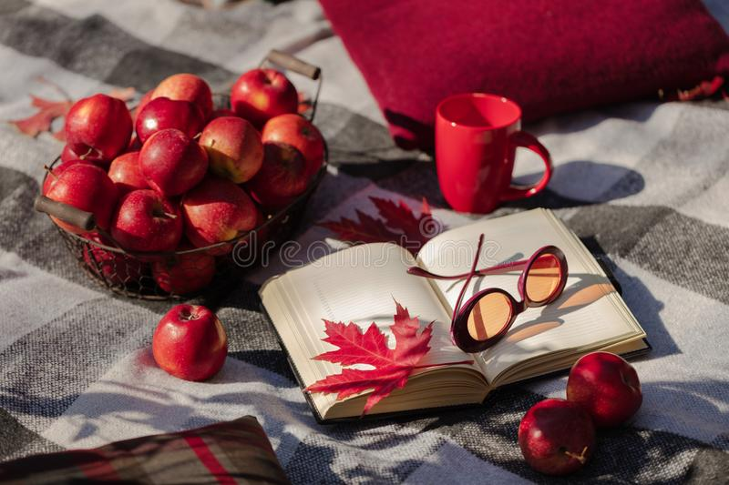Autumn warm days. Indian summer. Picnic in the garden - blanket and pillows of gray, burgundy and green color on the background of. Autumn leaves. Selective royalty free stock photography