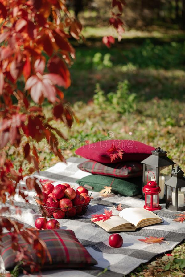Autumn warm days. Indian summer. Picnic in the garden - blanket and pillows of gray, burgundy and green color on the background of. Autumn leaves. Selective stock image