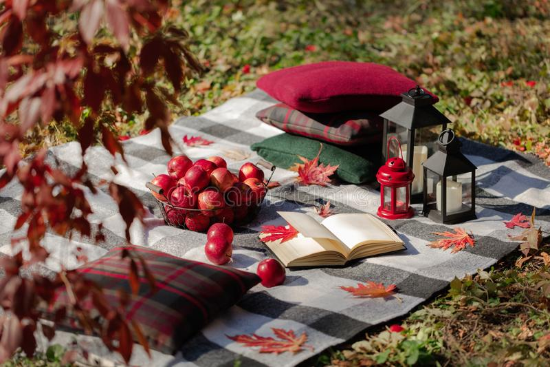 Autumn warm days. Indian summer. Picnic in the garden - blanket and pillows of gray, burgundy and green color on the background of. Autumn leaves. Selective stock photo