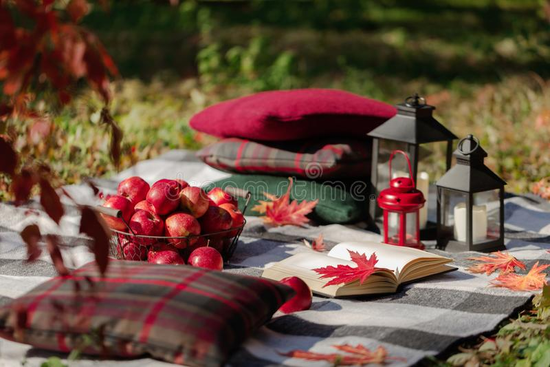 Autumn warm days. Indian summer. Picnic in the garden - blanket and pillows of gray, burgundy and green color on the background of. Autumn leaves. Selective stock photos