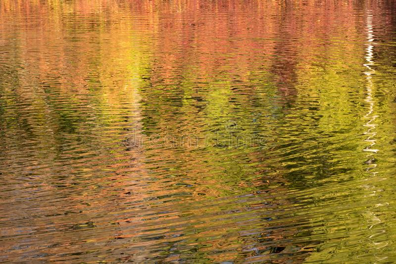 Autumn water in sunny day royalty free stock photography