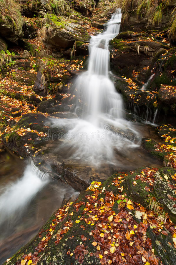 Download Autumn Waterfall stock image. Image of bush, current - 22094341
