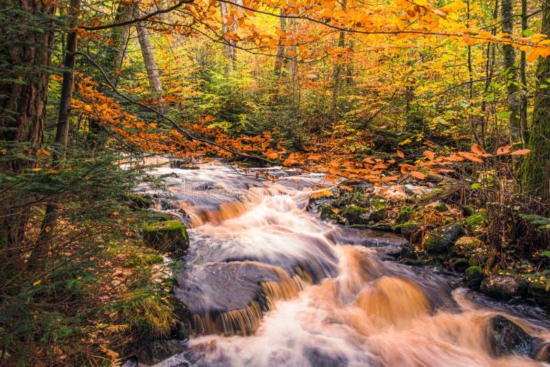 Autumn waterfall in Sweden stock photo