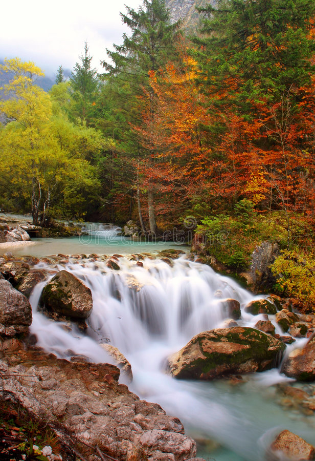 Autumn waterfalls. A waterfall, in the wilderness, surrounded by colorful trees