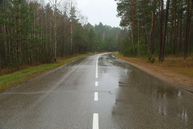 Autumn Wet Road stockbilder