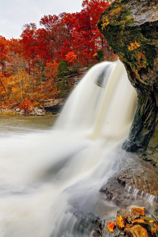 Autumn Whitewater fotos de archivo