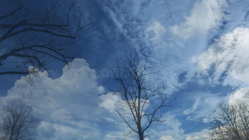 Bare leafless tree silhouettes on blue sky background. Blue sky covered with white clouds. royalty free stock photos
