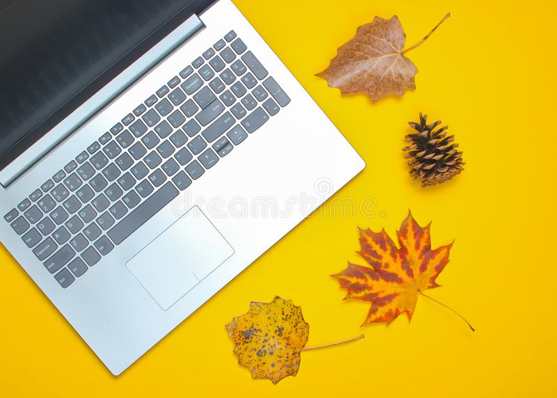 Autumn winter business still life. Laptop, fallen leaves royalty free stock photography