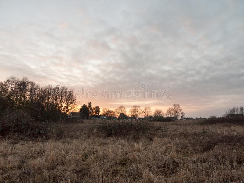Autumn winter dead grass field sunset grey overcast sky. Essex; england; uk royalty free stock photography