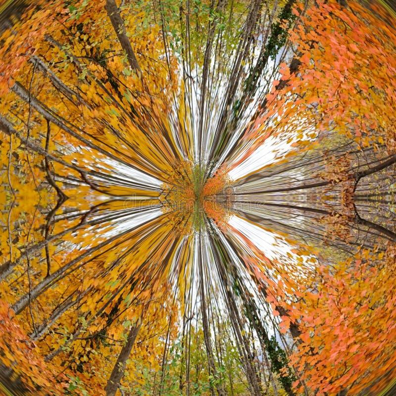 Free Autumn Winter Nature Golden Forest Abstract Art Stock Photos - 164537863