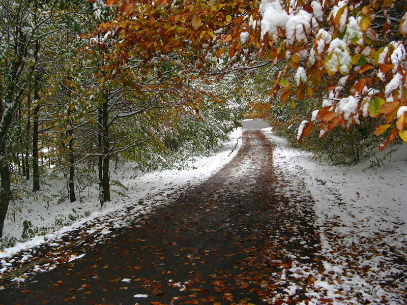 Download Autumn And Winter In The Same Time On A Path Stock Image - Image: 12733857