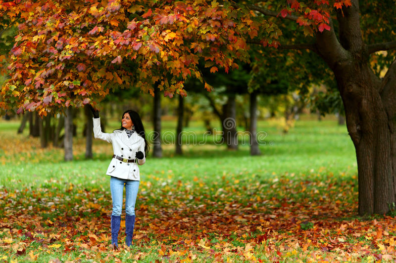 Autumn woman royalty free stock photo