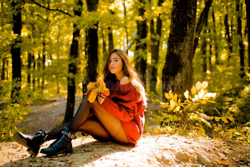 Autumn woman. Autumn Beauty. Fall concept. Autumn Park. Outdoor fashion photo of young beautiful lady surrounded autumn stock photography