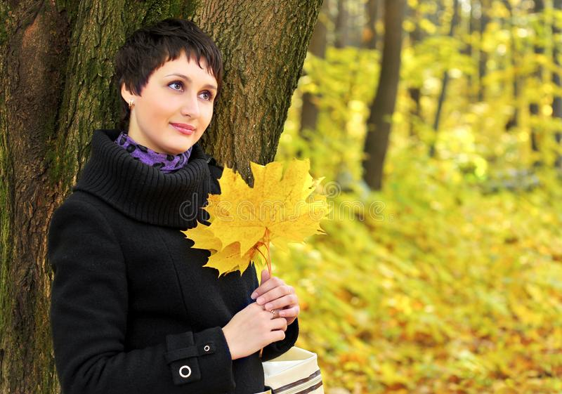 In autumn woman near tree trunk holding a bouquet of maple leaves stock images