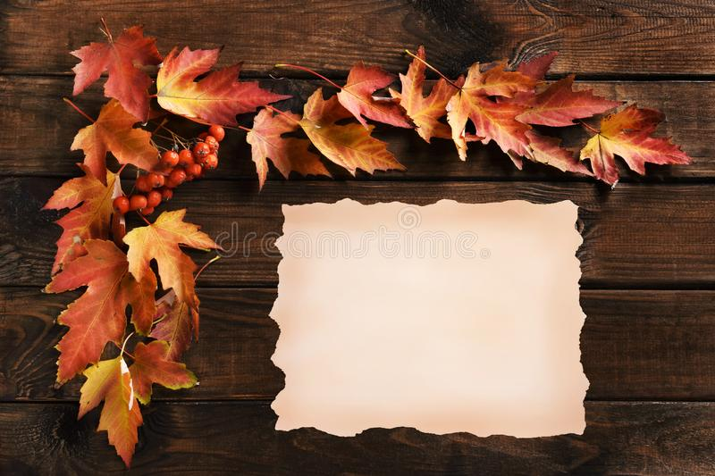 Autumn wooden background with leaf frame and old paper sheet. Autumn wooden background with colorful leaf frame and old paper sheet for own text royalty free stock image