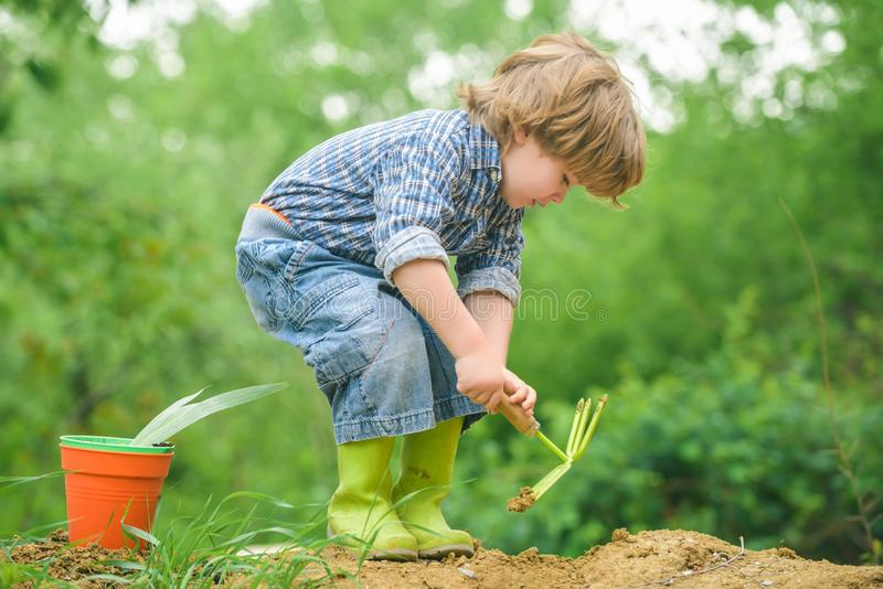 Autumn work. Boy with a shovel, gardening. Digging land for harvest. Garden concept. Cute child and nature. royalty free stock photography