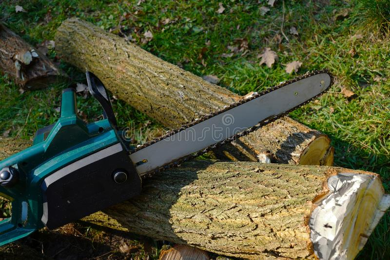 Autumn work. Electric chainsaw on the background of cut acacia t. Electric chainsaw on the background of cut acacia tree trunks stock image