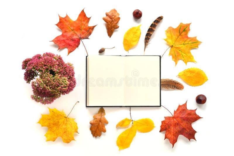 Autumn Work Place imagenes de archivo