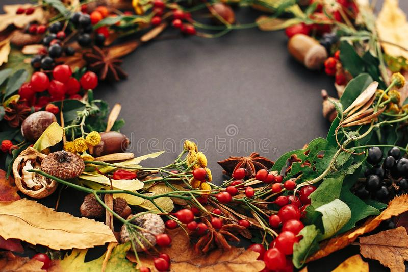 Autumn wreath of fall leaves, red berries, acorns, anise, nuts, autumn flowers closeup on black background. Happy Thanksgiving stock photos