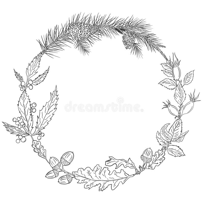 Autumn wreath of oak leaves and acorns, rose hip, girlish grapes, pine branches and pine cones. stock illustration