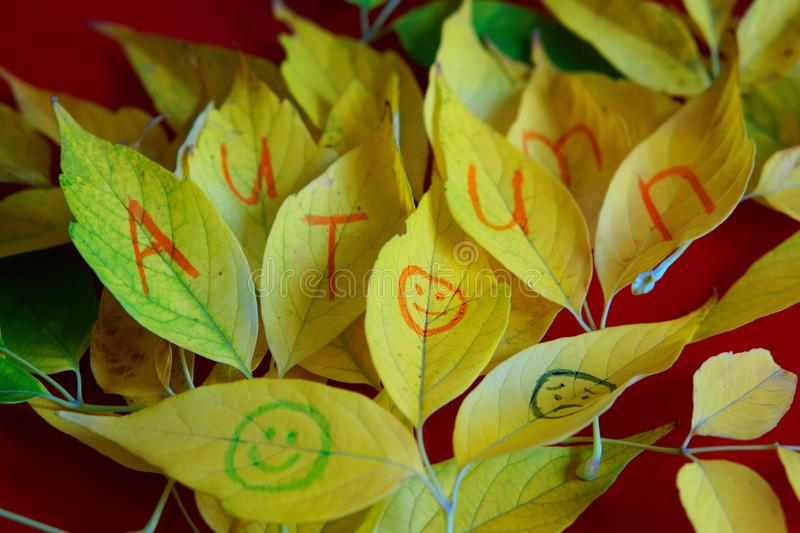 Autumn yellow leaves with an inscription and emoticons. Autumn mood royalty free stock photography