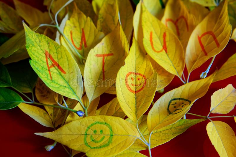 Autumn yellow leaves with the inscription and emoticons on a red. Background. Autumn mood royalty free stock images